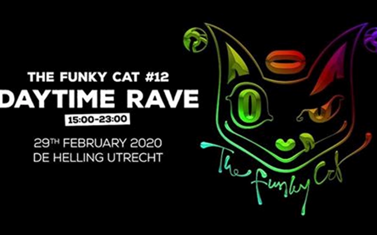 The Funky Cat (1)
