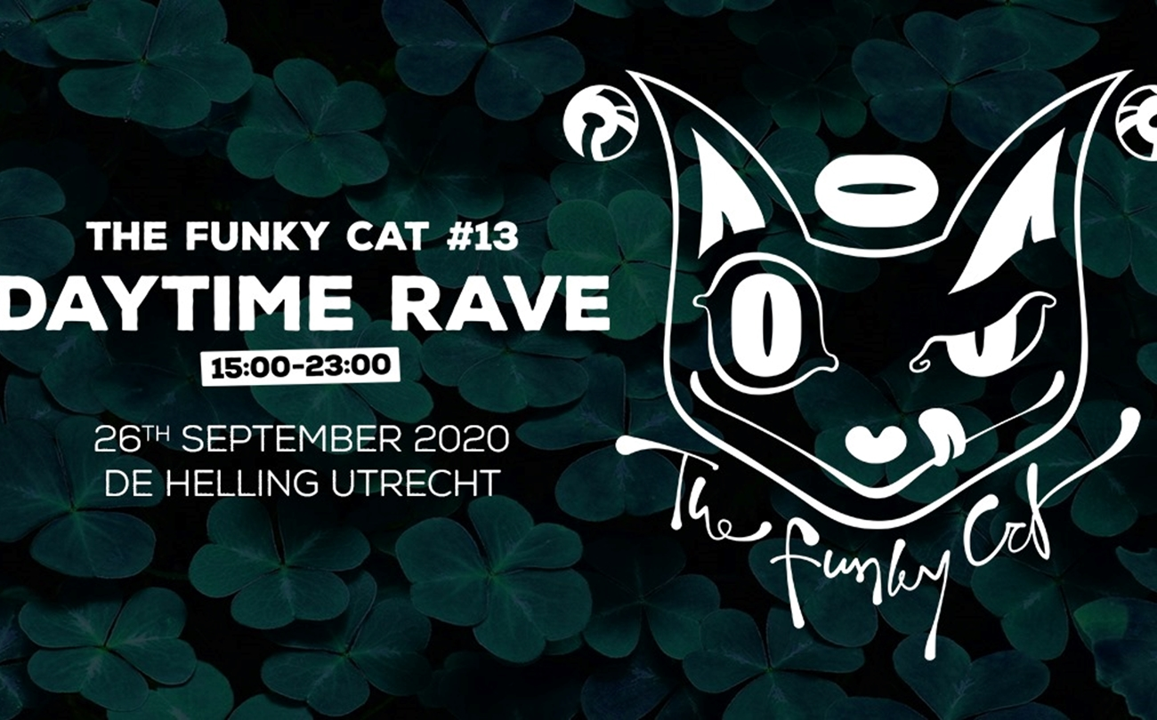 The Funky Cat #13